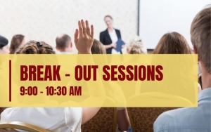 BREAK - OUT SESSIONS